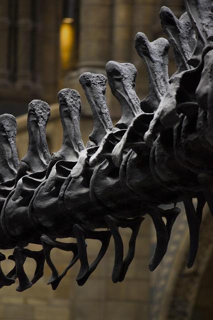 London, Museum, History, Dinosaur