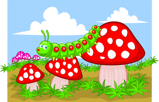 Mushroom, Larva, Caterpillar, Insect, Nature