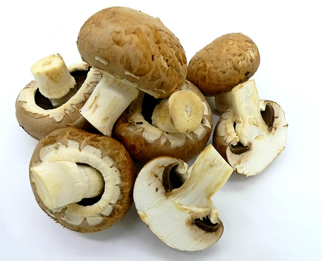 Mushrooms, Brown Mushrooms, Food, Edible, Eat, Pleasure