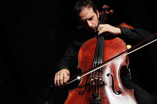 Cello, String Instrument, Instrument, Music