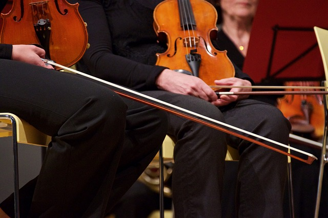 Violin, String, Close Up, Musical Instrument