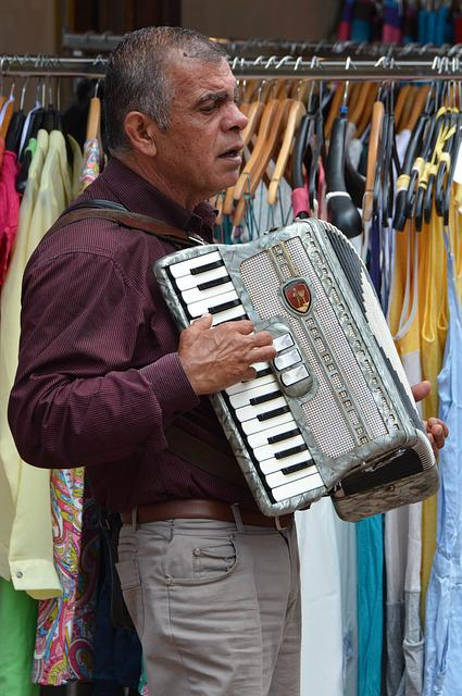 Busker, Musician, Accordion, Music, People, Man
