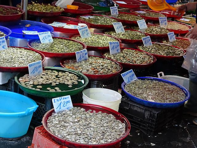 Market, Italy, Naples, Mussels, Vongole