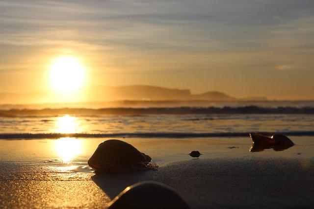 Sunrise, Sea, Beach, Mussels, Sun, New Zealand