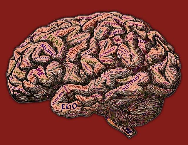 Mind, Mindset, Conflict, Suffering, Me, Mine, Myself