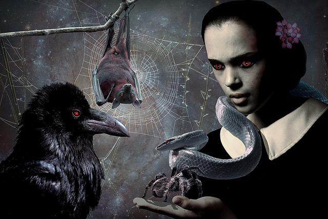 Gothic, Fantasy, Girl, Mysterious, Dark, Crow, Snake