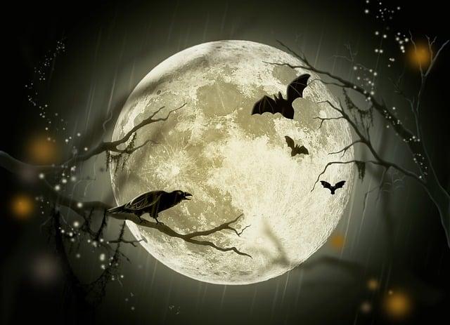 Halloween, Holidays, Mystery, Fairy Tale, Moon, Crow