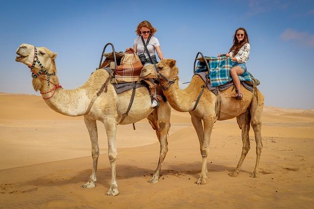 Camel, Desert, Namib Desert, Blue Skies, Namibians