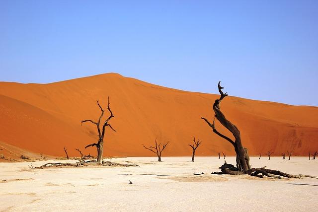 Deadvly, Namibia, Desert, Dry, Sandy, Sand Dune