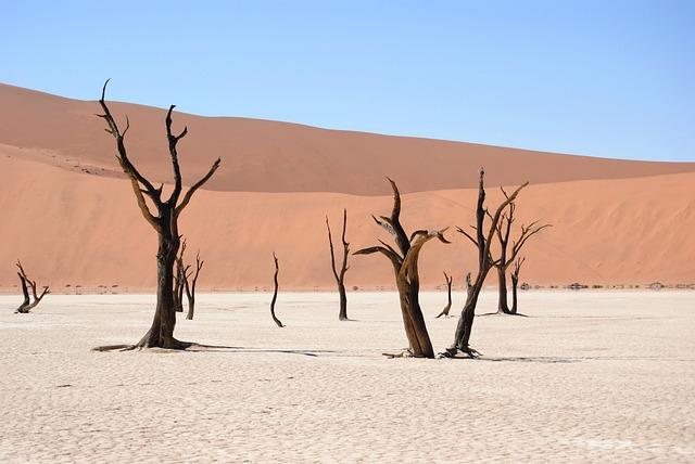 Dead Vlei, Namibia, Desert, Dunes, Sand, Dry, Africa