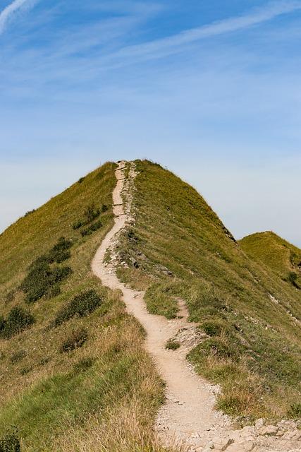 Path, Narrow, Away, Sidewalk, Nature, Hiking, Degree