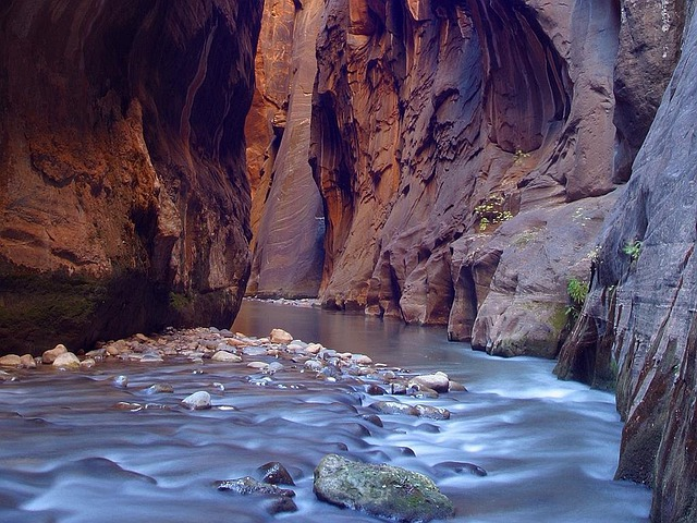 Gorge, Canyon, Riverbed, Narrow, Eng, Zion