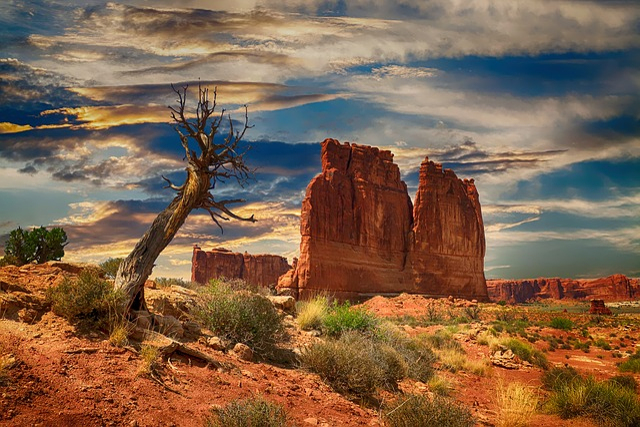Bryce Canyon, Usa, Canyon, Bryce, National, Park