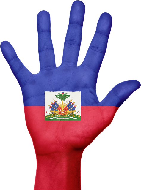 Haiti, Flag, Hand, National, Fingers, Patriotic