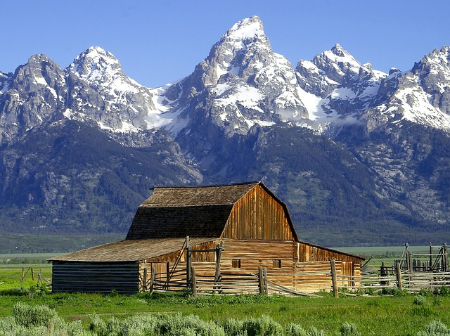 Barn, Hut, Mormonisch, Wyoming, National Park, Usa