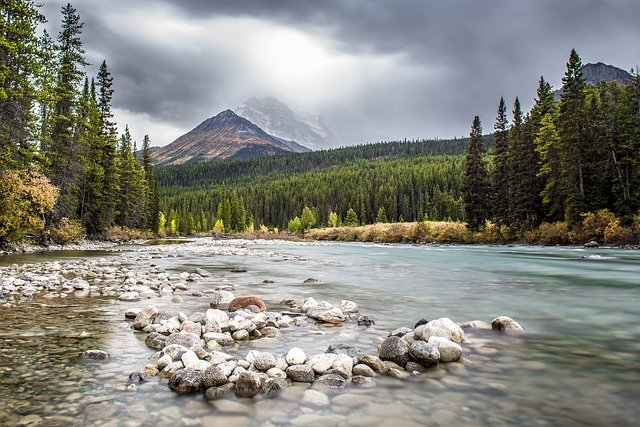 Canada, River, Banff, Forest, Water, National Park
