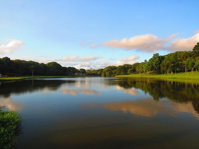Brazil, Barigui Park, Curitiba, Nature, Natural Park