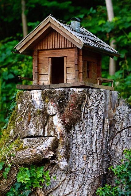 Wood, Model, Cottage, Natural Produce