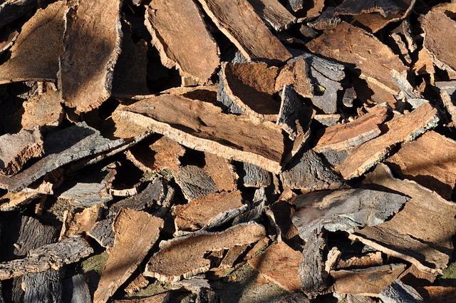 Cork Oak, Cork, Tree Bark, Natural Product, Cork Board