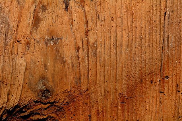 Solid Wood, Wood, Structure, Natural Product, Texture
