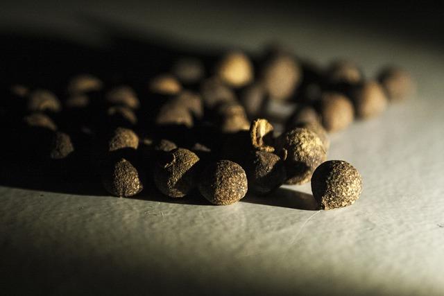 Allspice, Spice, Nature, Bronze