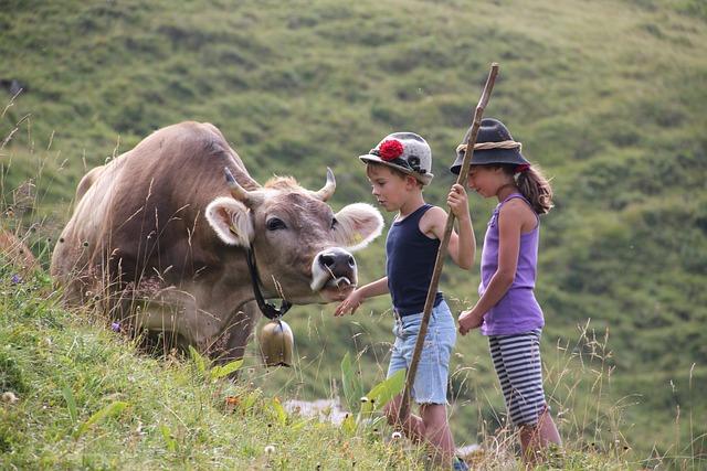 Alpe, Alm, Alpine, Mountains, Nature, Landscape, Cow