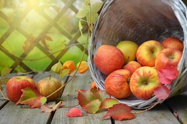 Apple, Autumn, Leaf, Basket, Still Life, Nature