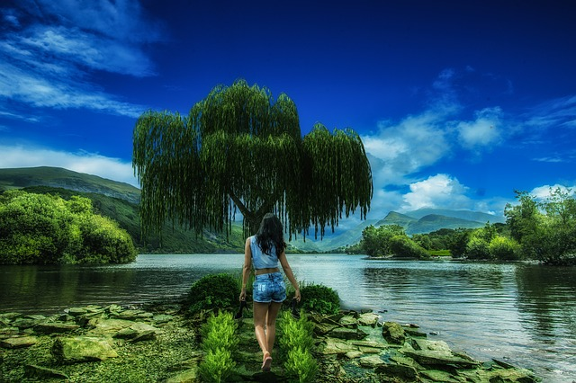 Background, Wallpaper, Girl, Nature, Silence