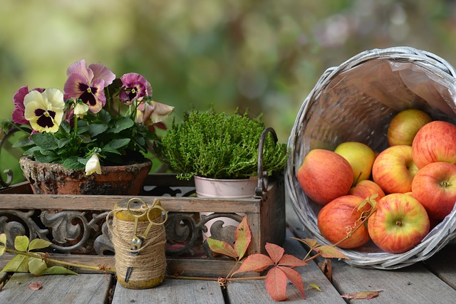 Apple, Autumn, Leaf, Basket, Still Life, Nature