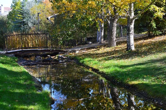 Stream, Bridge, Trees, Park, Grass, Nature, Landscape
