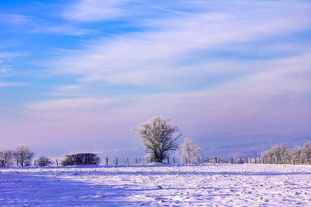 Dawn, Winter, Snow, Nature, Frost, Cold, Sky, Landscape
