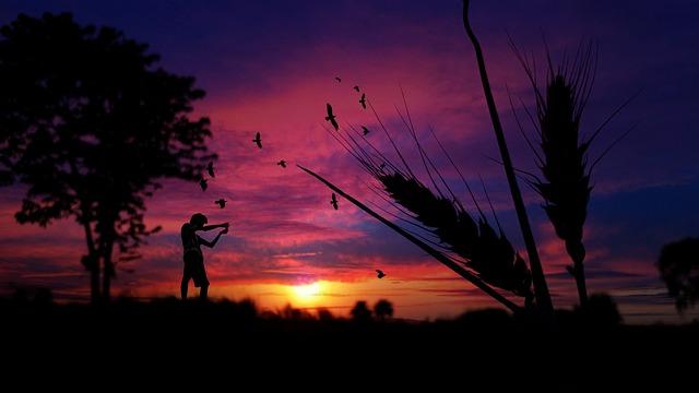 Sunset, Silhouette, Dusk, Sky, Dawn, Evening, Nature