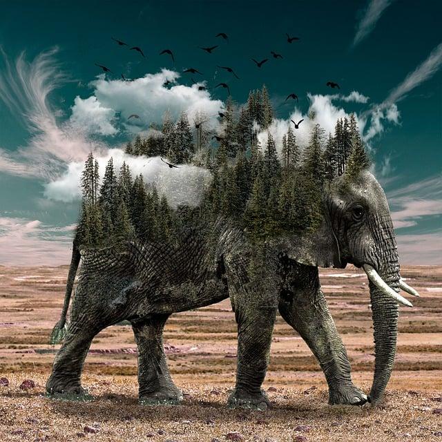Elephant, Clouds, Trees, Sky, Nature, Animals