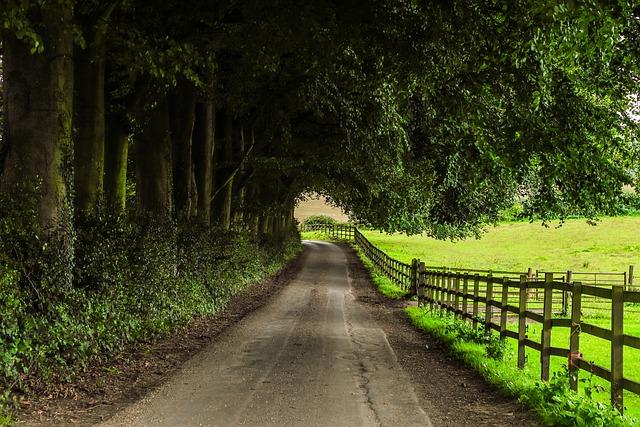 Path, Farm, Nature, England