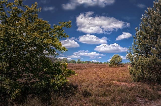Nature, Landscapes, Summer, Clouds, Fair Weather Clouds