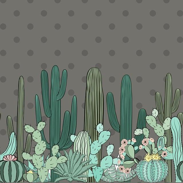 Cactus, Plant, Green, Nature, Cacti, Flora, Design