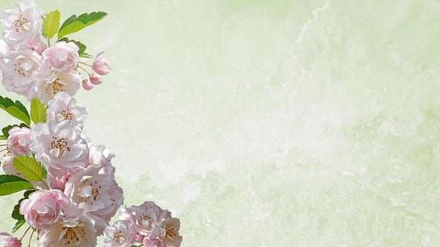 Greeting Card, Desktop, Flower, Flora, Nature, Leaf