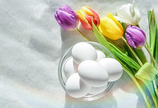 Flower, Nature, Easter, Flora, Floral, Tulip, Petal