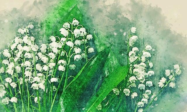 Flower, Flora, Nature, Season, Field