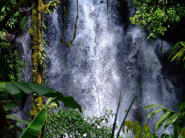 Waterfalls, Cedar, Philippines, Nature, Forest, Tropics
