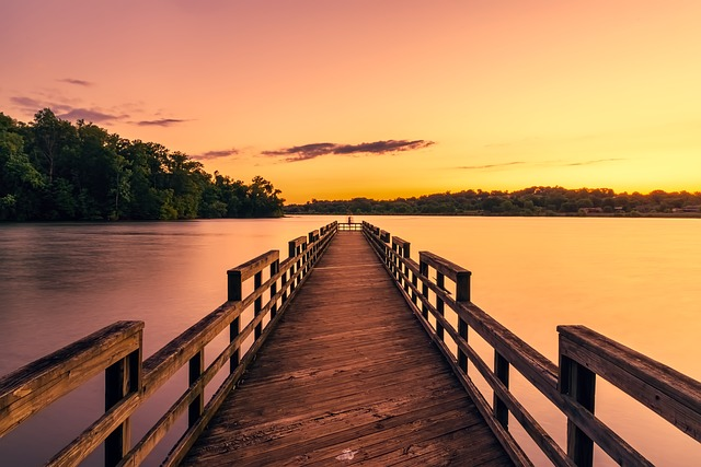 Pier, Dock, Tennessee, Forest, Trees, Woods, Nature
