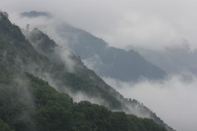 Panorama, Mountain, Nature, Landscape, Sky, Fog, Forest