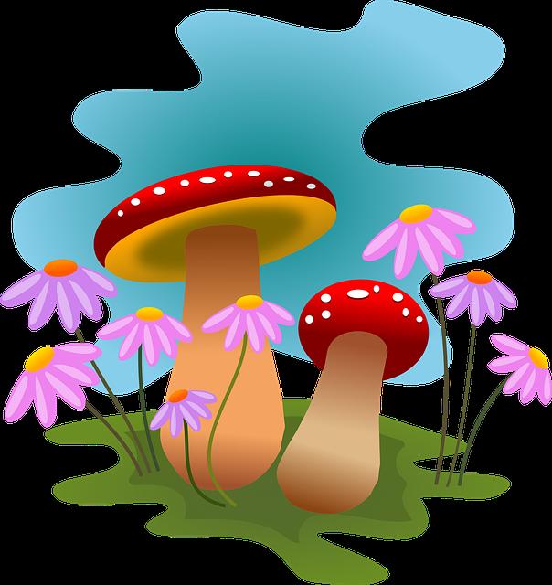 Mushrooms, Autumn, Fungi, Forest, Flowers, Nature