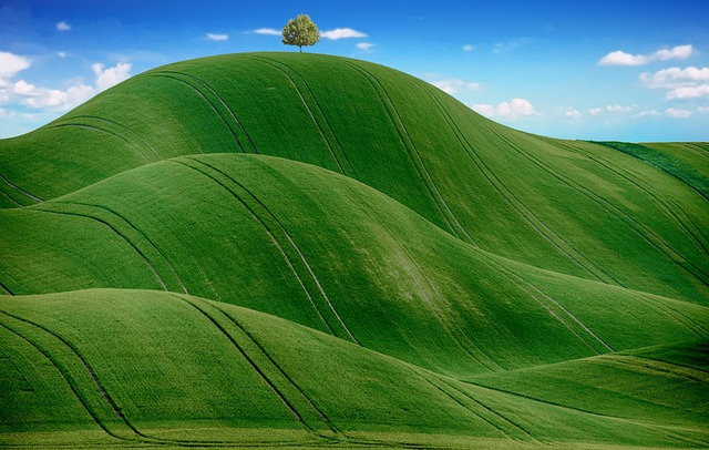 Hills, Countryside, Grass, Green, Nature, Agriculture