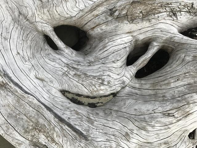Driftwood, Nature, Texture, Alien, Smile, Beach, Gray