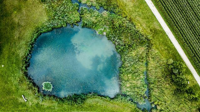 Lake, Aerial View, Nature, Landscape, Away, Pond, Green