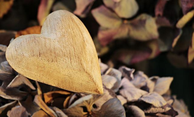Heart, Wooden Heart, Wood, Love, Nature, Symbol