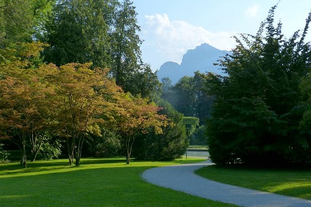 Park, Hellbrunn, Unterberg, Nature, Tree, Shadow Play