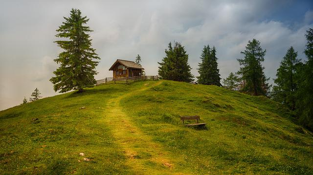 Tree, Grass, Landscape, Panorama, Nature, Hill, Hut