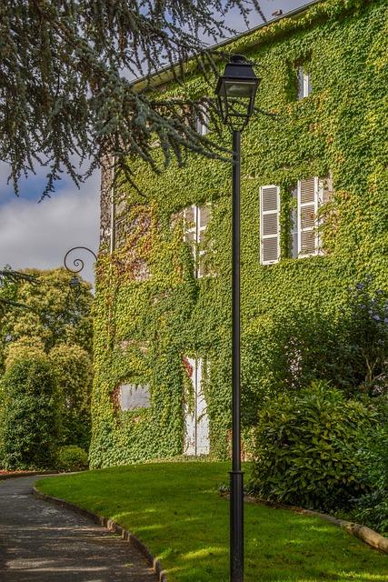 Tree, Grass, Nature, House, Summer, Outdoors